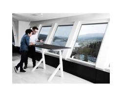 Easydesk professional zit/sta bureau 55°